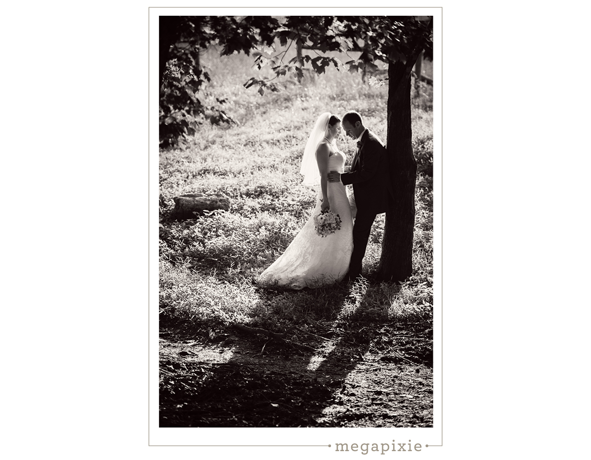 Elodie Farms Wedding Photographer