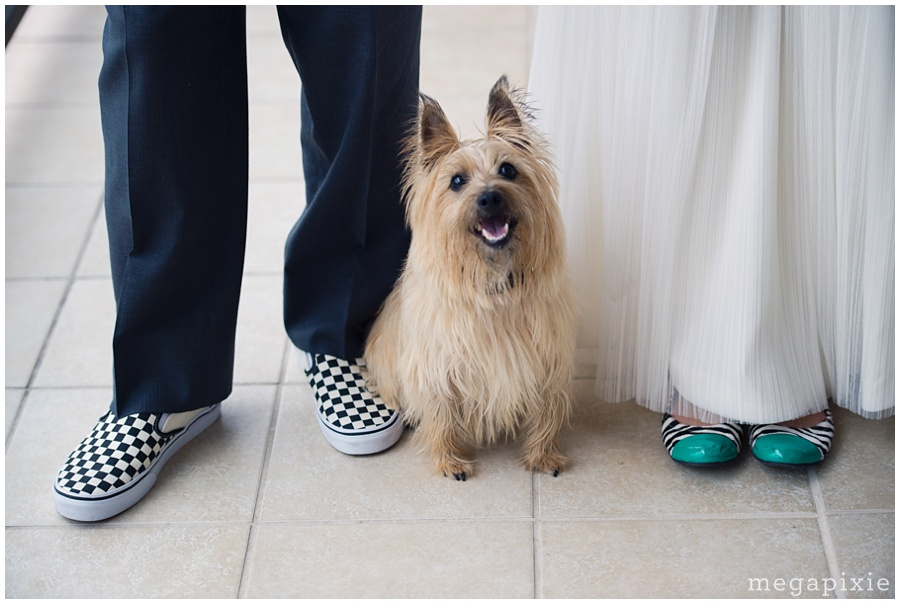 Pet-Friendly-Wedding-Photographers-Durham