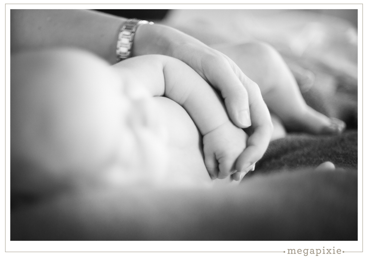 Durham Newborn Photographers