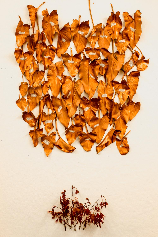 leaves-21.jpg