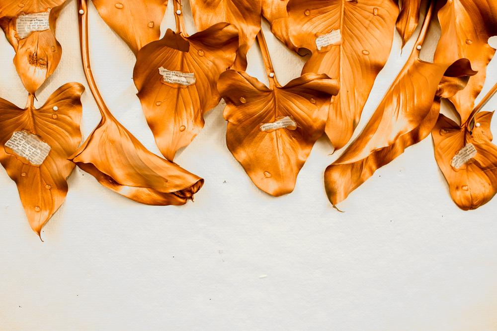 leaves-24.jpg