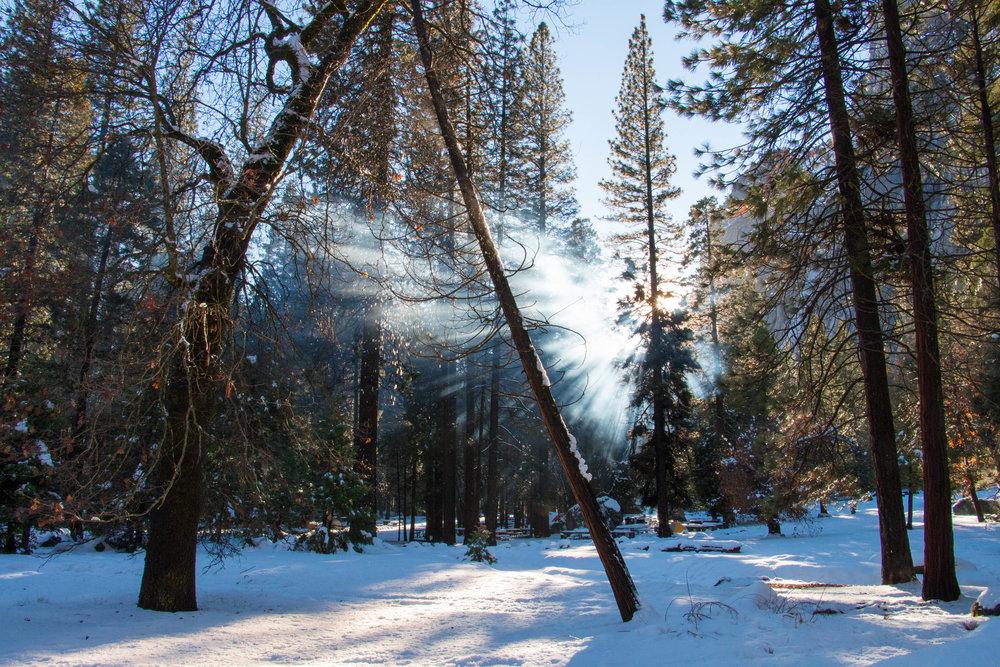 Yosemite-42.jpg