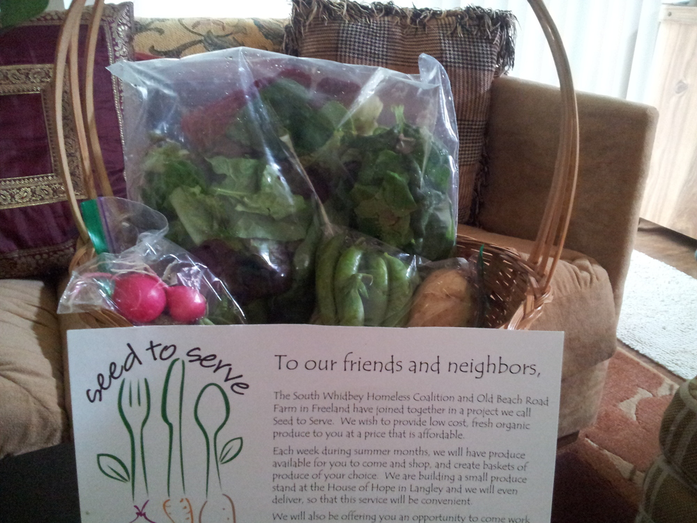A lovely example of our baskets we are passing onto our neighbors and friends at Brookhaven and Saratoga.  Healthy organic vegetables, what could be nicer.  Thank you Tulapip Tribes for giving us the opportunity to gift our neighbors and friends.