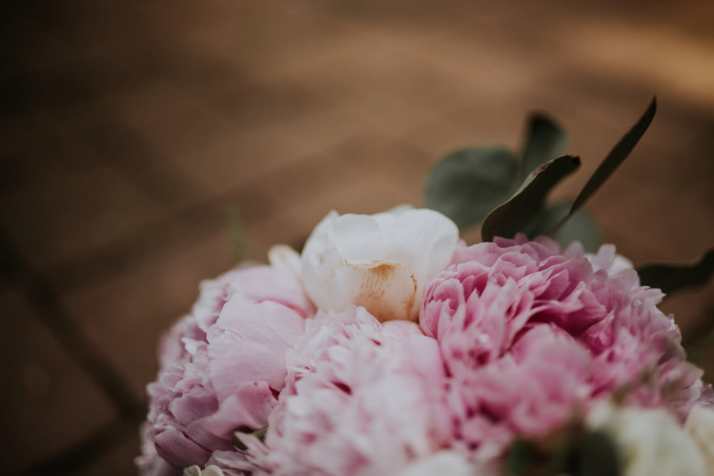 evergreen-gardens-bellingham-wedding-seattle-photographer-caitlyn-nikula-11.jpg