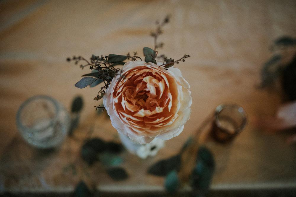 evergreen-gardens-bellingham-wedding-seattle-photographer-caitlyn-nikula-86.jpg