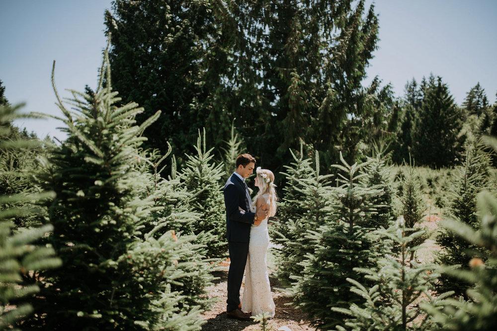 trinity-tree-farm-issaquah-washington-wedding-seattle-lifestyle-photographer-caitlyn-nikula-photography-34.jpg