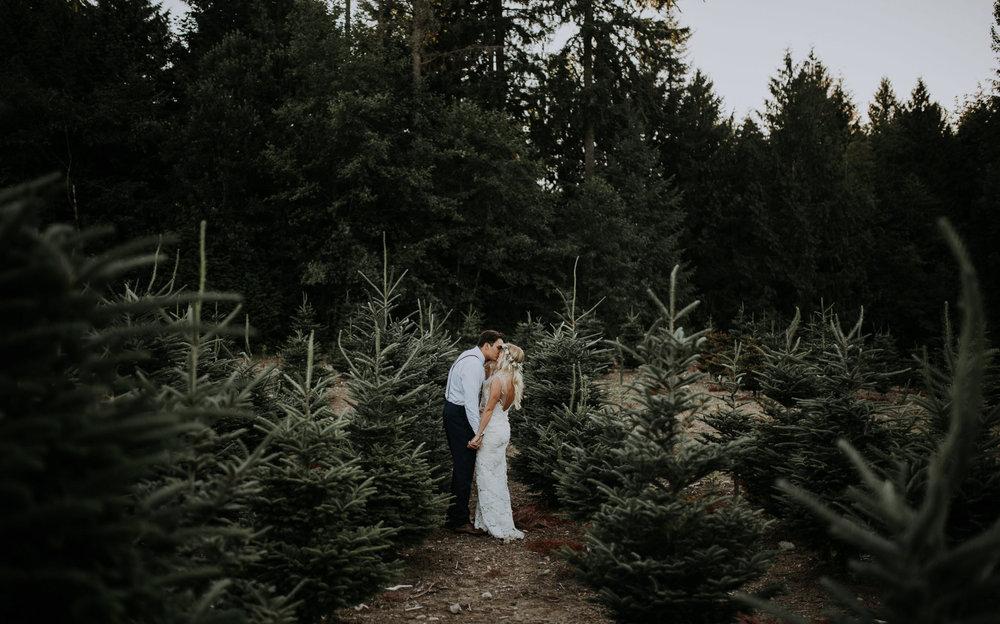trinity-tree-farm-issaquah-washington-wedding-seattle-lifestyle-photographer-caitlyn-nikula-photography-102.jpg