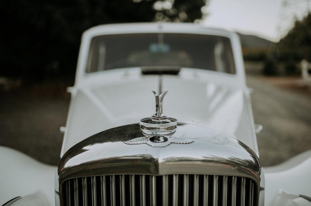 trinity-tree-farm-issaquah-washington-wedding-seattle-lifestyle-photographer-caitlyn-nikula-photography-112.jpg