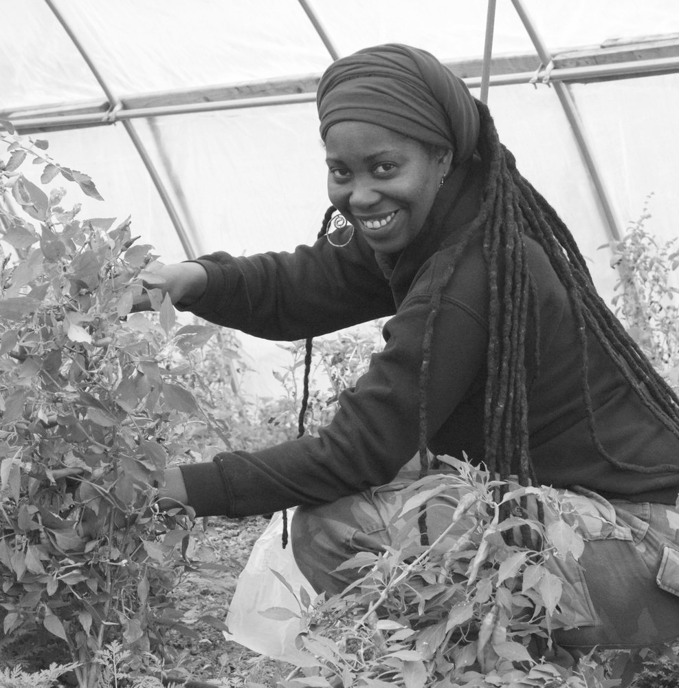 Kirtrina Baxter, Soil Generation