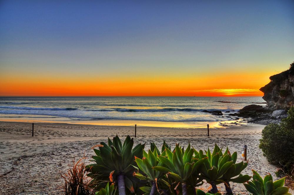 Beach (9).jpg