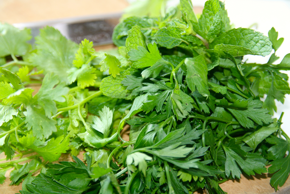Fresh coriander, mint and parsley - Great taste, fantastic health benefits