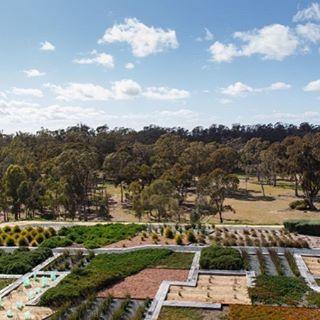 Australian Botanic Gardens Shepparton. Photo credit to @visitshepparton instagram