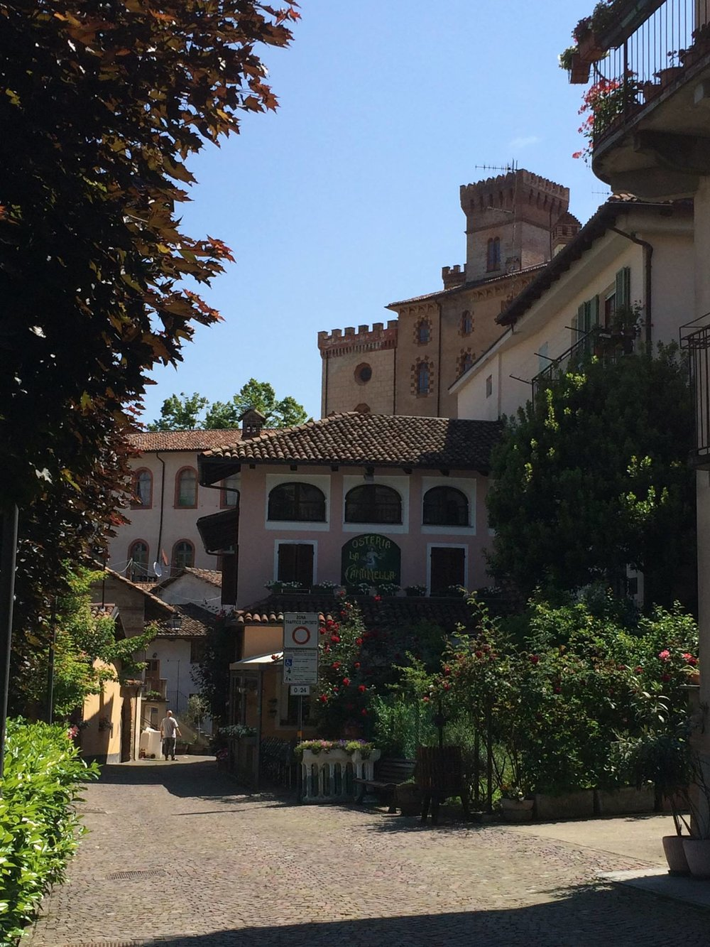 Piedamont Italy (4).jpg