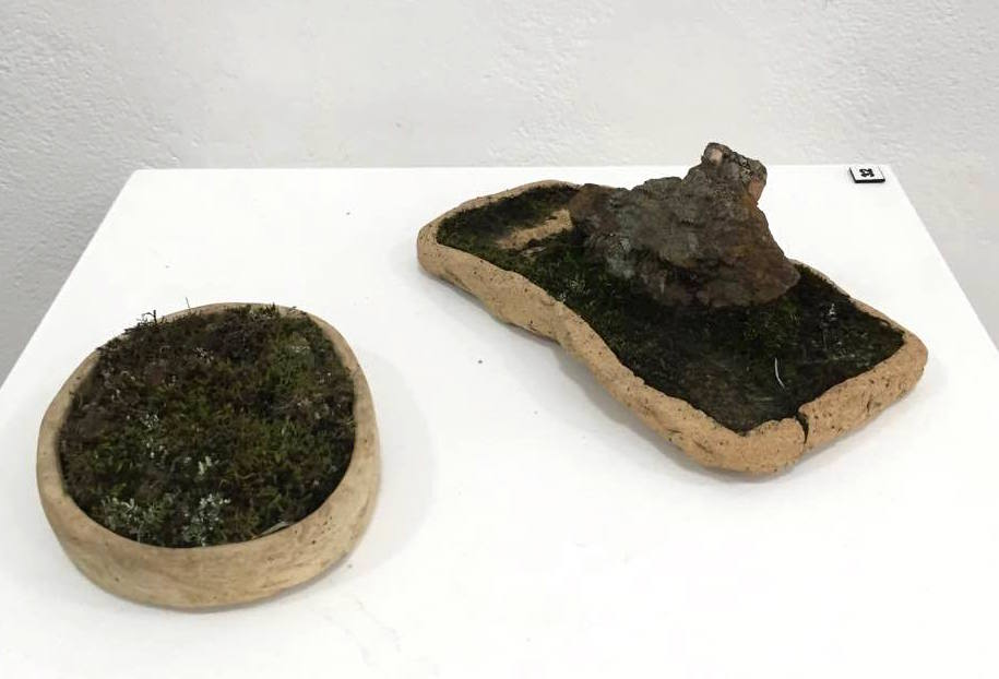 Matthew Allam Nature's Reclamation #11 and Gold Stoneware with moss and Lichen - must be kept moist