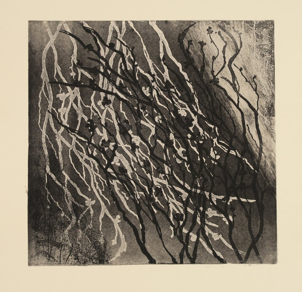 Blind Woman's Garden I_Gina McDonald_etching.JPG