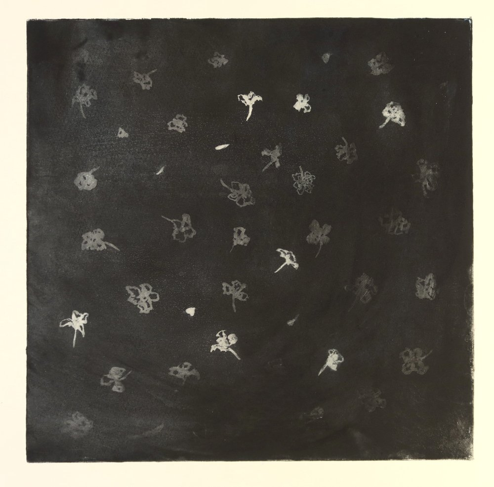 Blind Woman's Garden V_Gina McDonald_etching.JPG