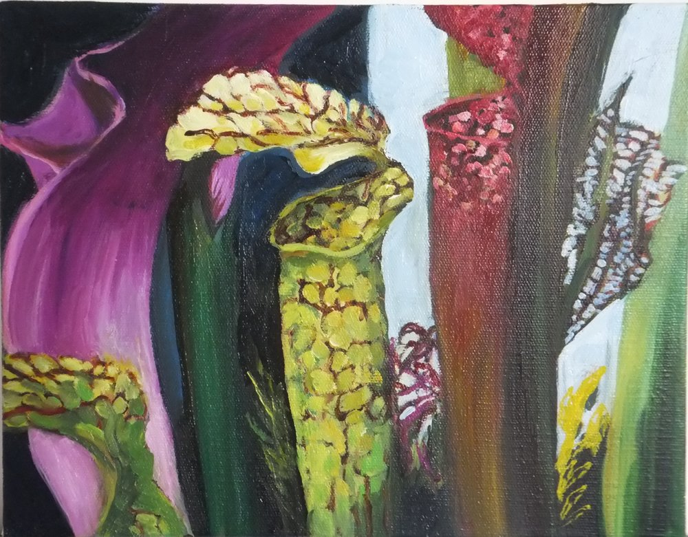 Lydia Miller_El. Blooms IV_28 x 36 cms.JPG