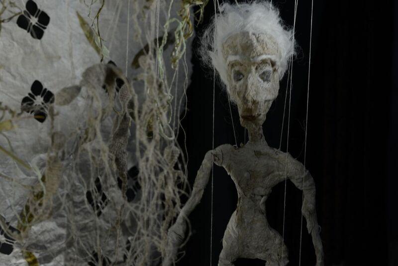 Hanne Frey Husø, Botanikk for Adelaide. Håndlaget papir og video (animasjonsfilm 13 min.)