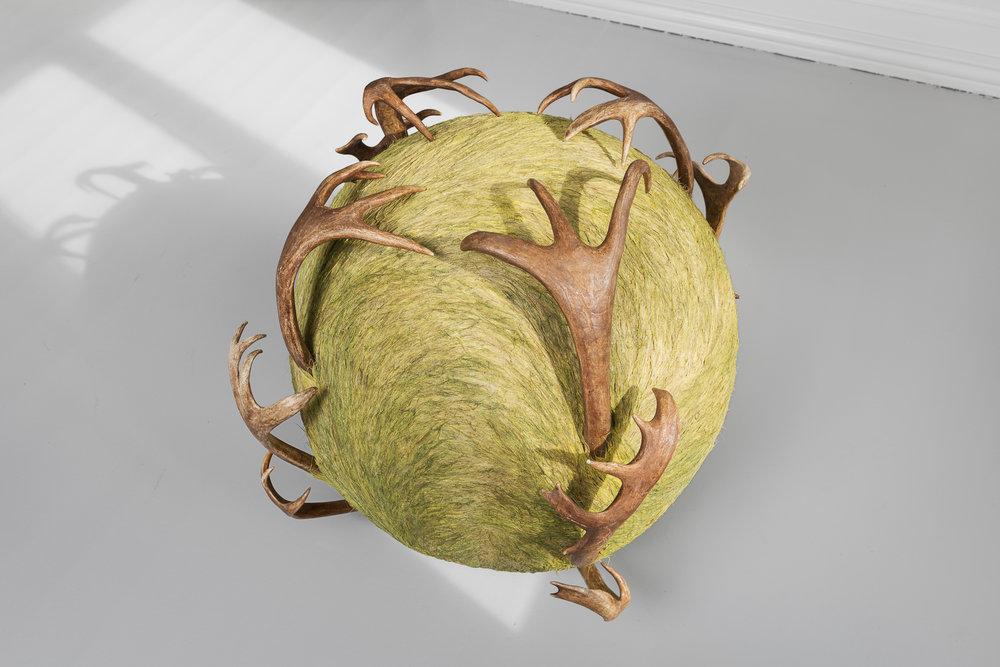 Aslaug M. Juliussen,  OvdagiehdaKuvlla / ForehandSphere . Gulvobjekt i reinhår med gevir. Foto :  Istvan Virag