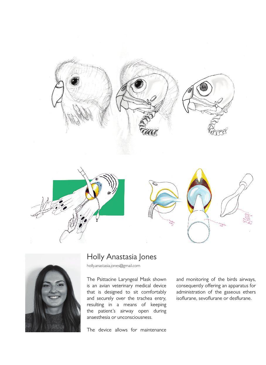BSc Booklet38.jpg