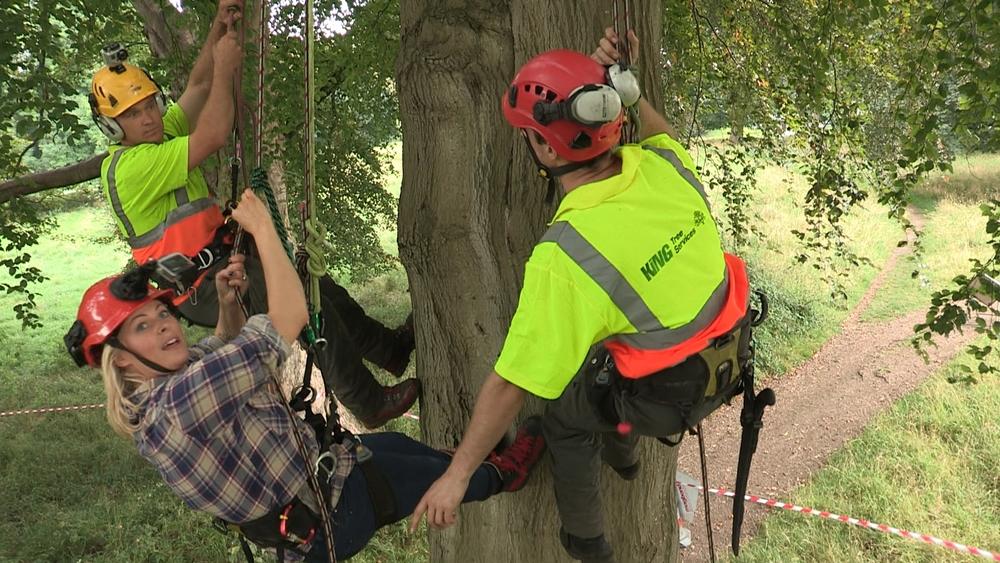 Trees10 - Tree Climbing.jpg