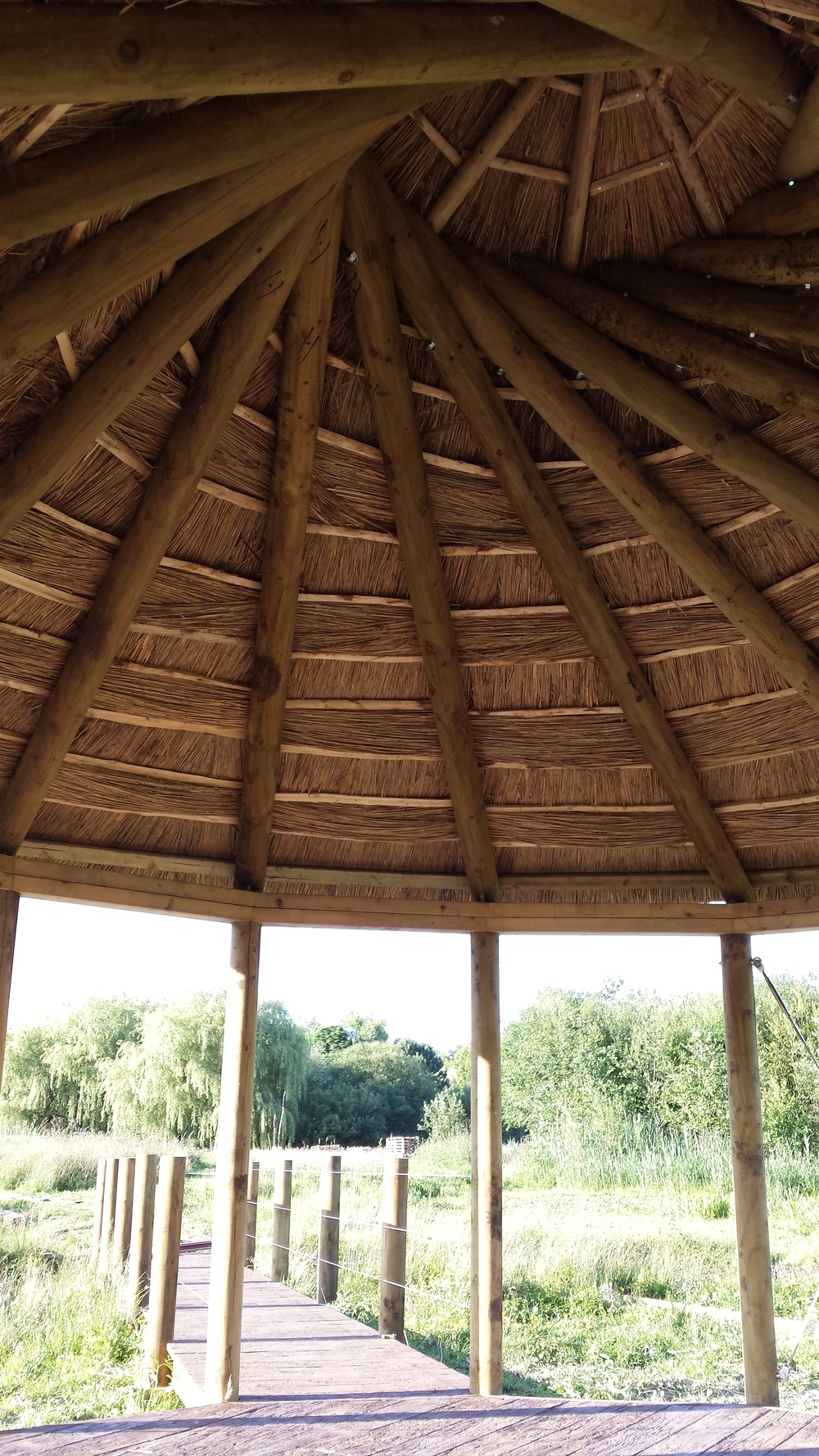 Reciprocal roof structure