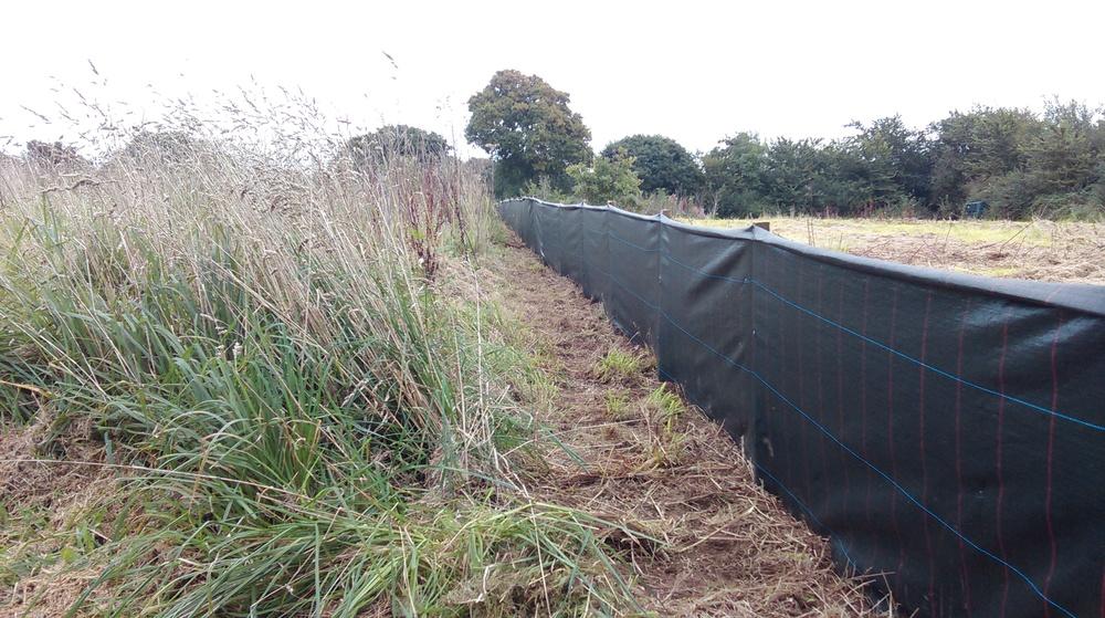 Temporary reptile exclusion fencing