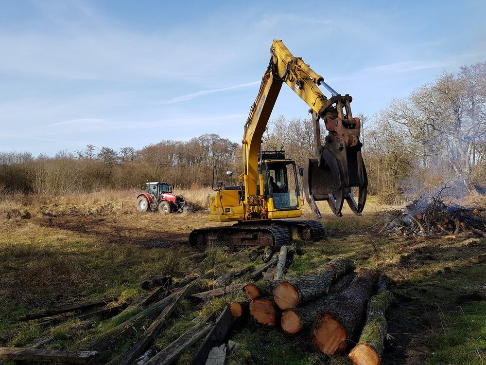 Timber extraction during fen restoration