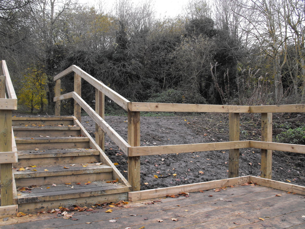 Steps down to pond dipping platform