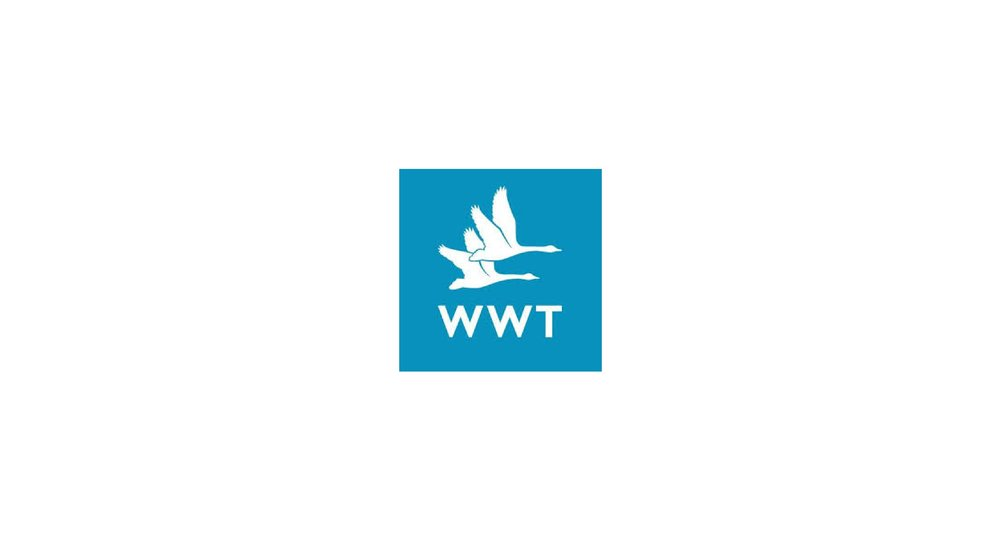 WWT.jpg