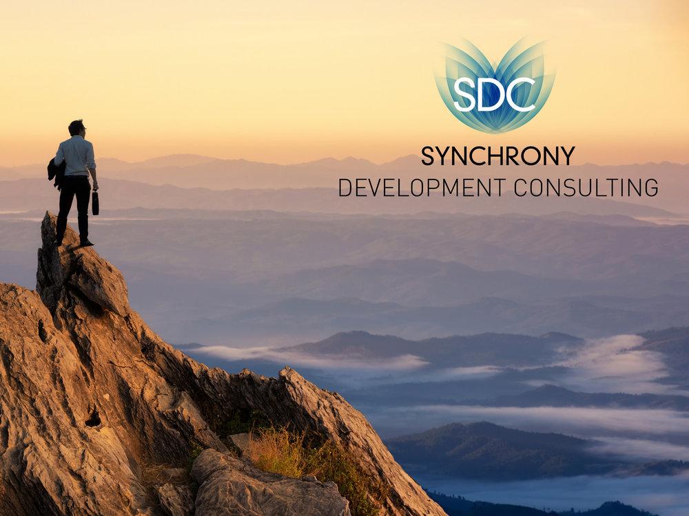Synchrony Development COnsulting