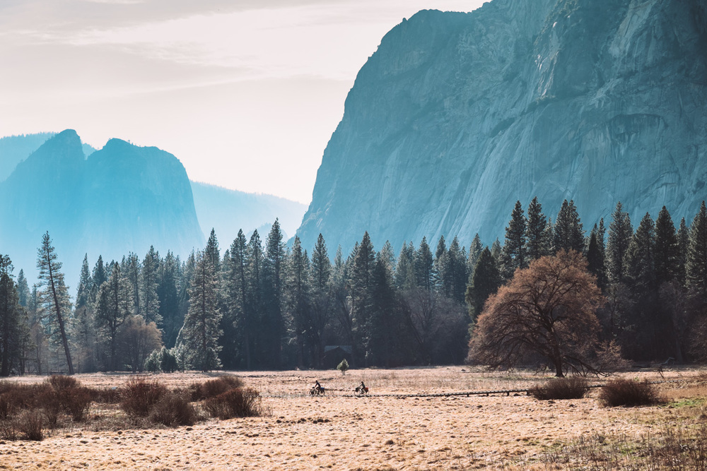 150220-California-Yosemite-Bike-005.jpg