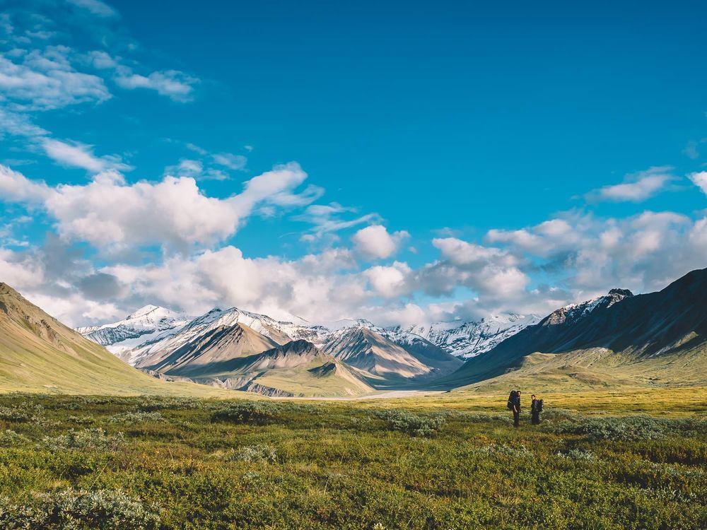 150814-HN-Alaska-DenaliNationalPark-75.jpg