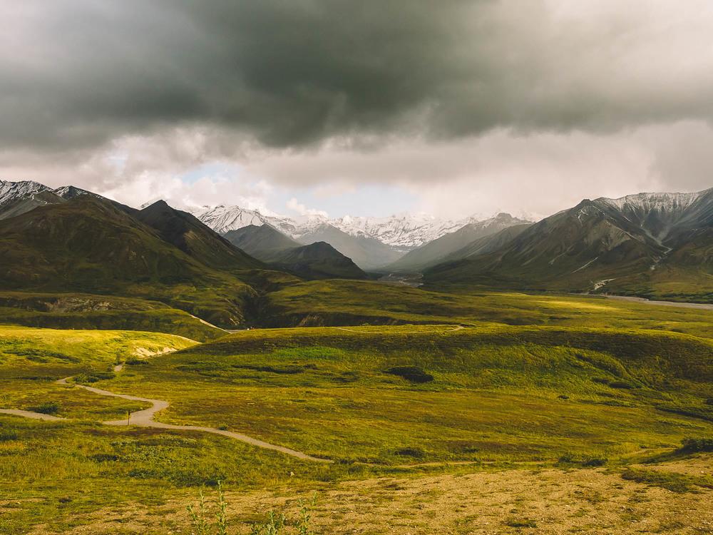 150814-HN-Alaska-DenaliNationalPark-66.jpg