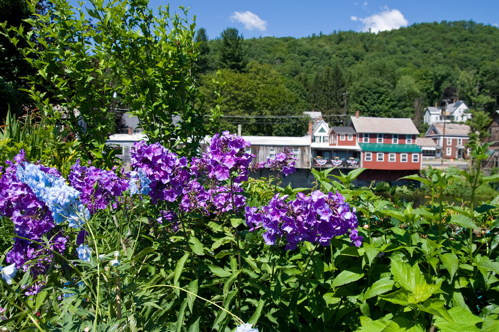 View of Shelburne Falls from the Bridge of Flowers during the Hilltown Half Century