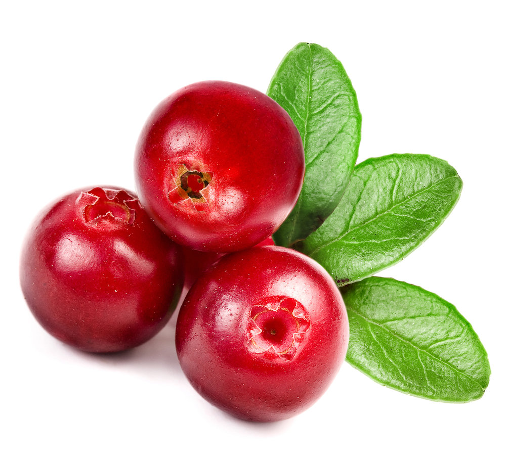 Finnish Organic Lingonberry