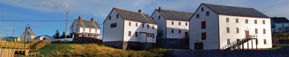 Step back into the heyday of the Newfoundland cod fishery and the merchant family, the Ryan's.