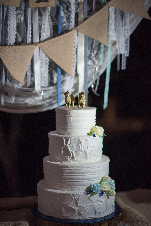 brandywine-wedding-tessie-reveliotis-photography-beautiful-and-blessed-events-013