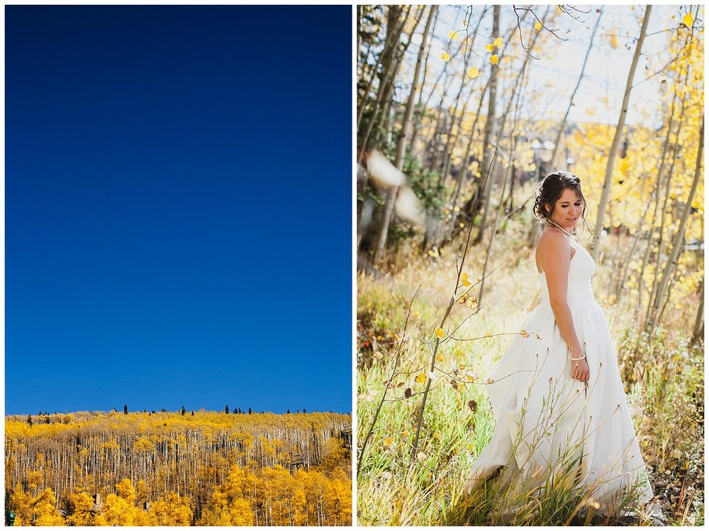 NE-leahandashtonphotography-Telluride-Colorado-Wedding_0006.jpg