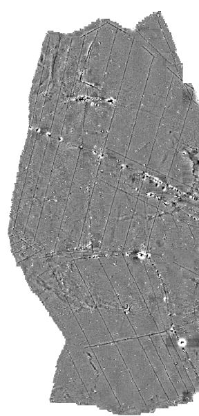 Magnetometry data showing the herringbone pattern created from buried land drains.