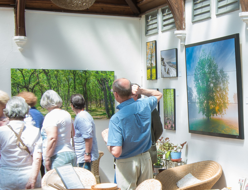 Art exhibition treberfydd House