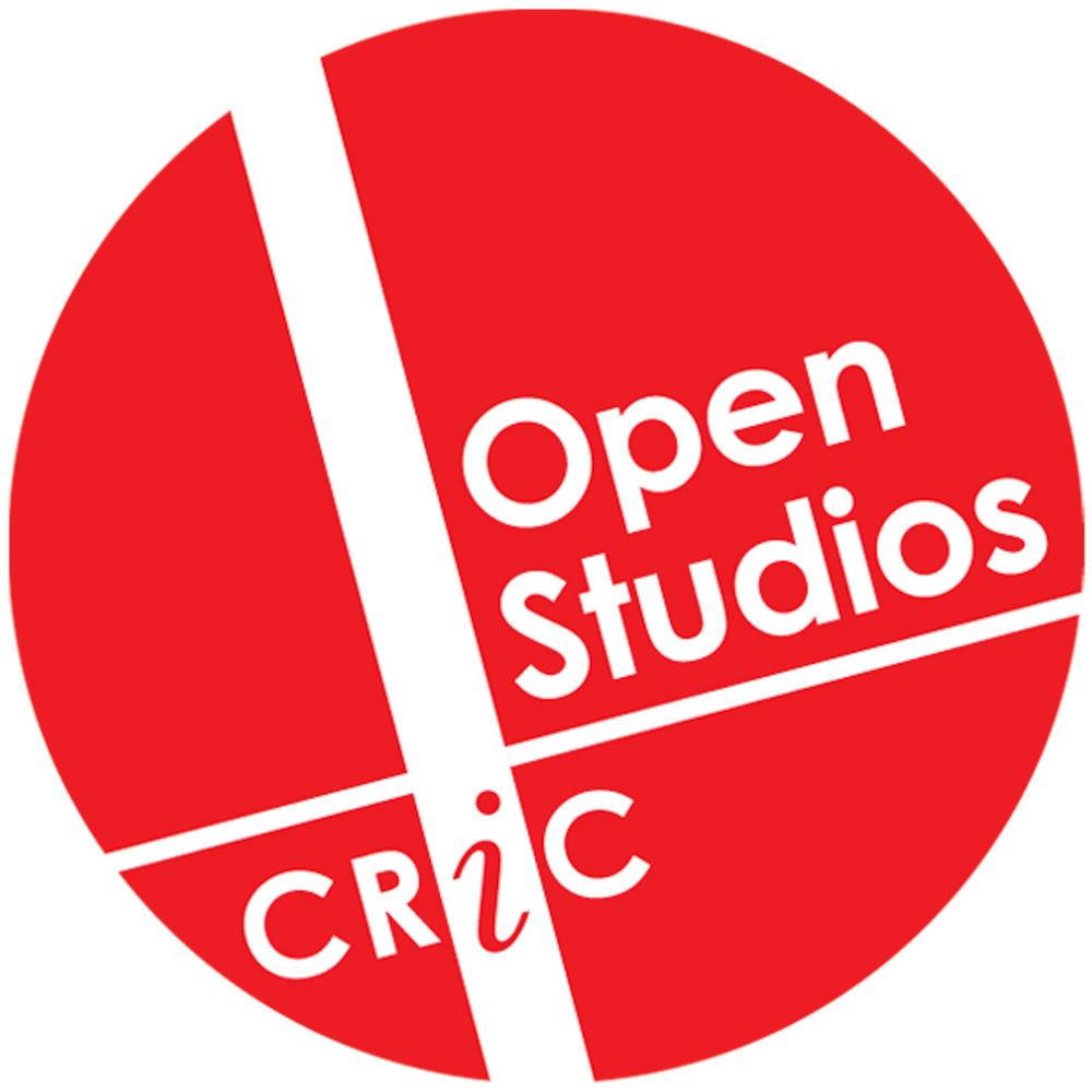 Open Studios logo 2013