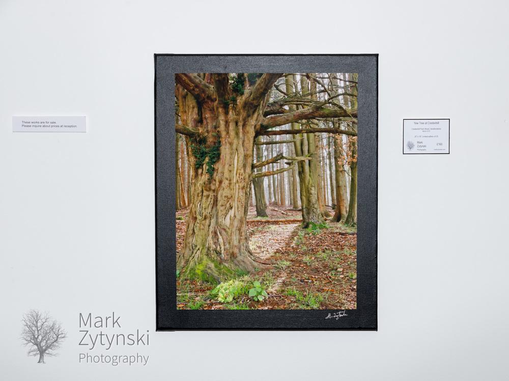 Zytynski-7750.jpg