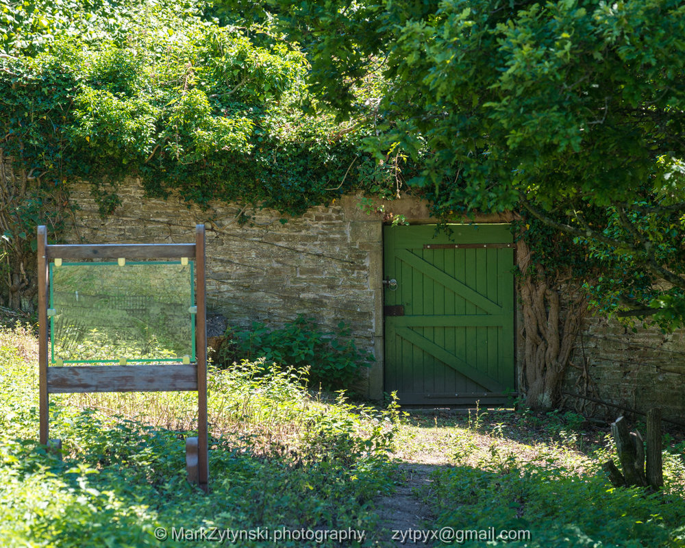 Zytynski-woodland-trust-5443.jpg