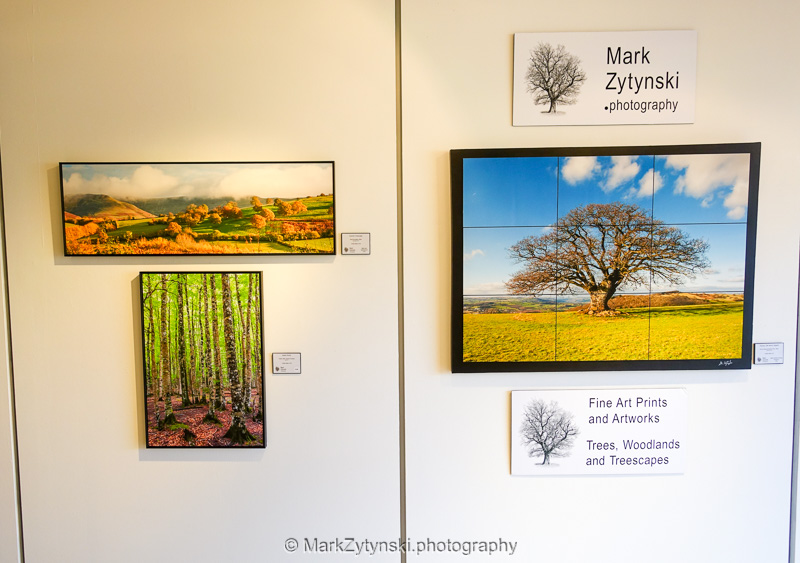Zytynski-exhibition-8.jpg
