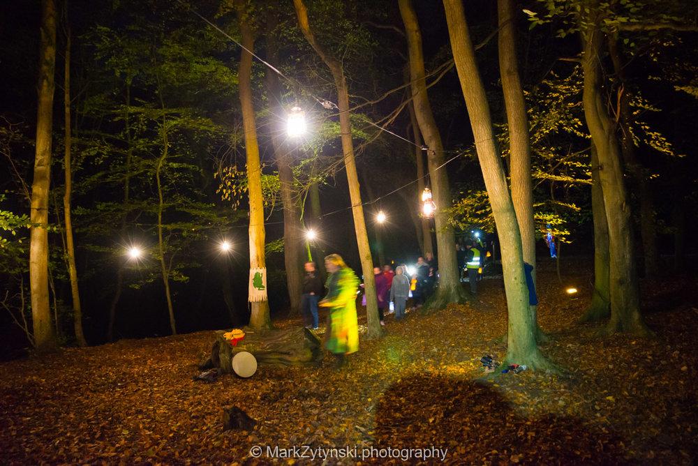Trees-woodlands-8488.jpg