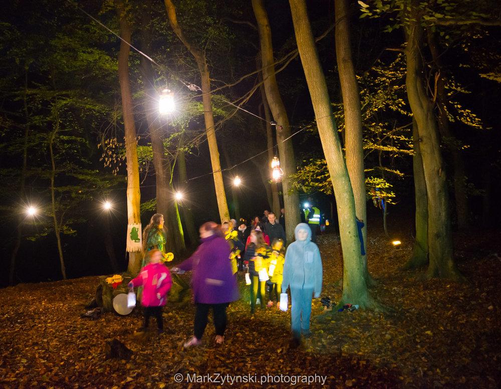 Trees-woodlands-8489.jpg