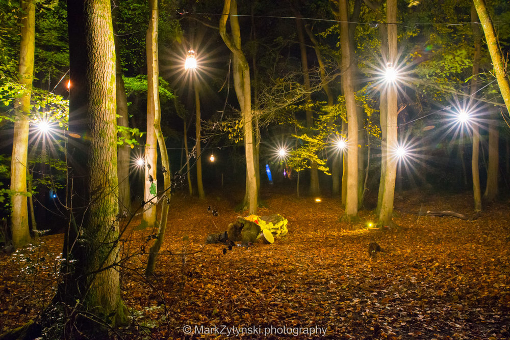 Trees-woodlands-8617.jpg