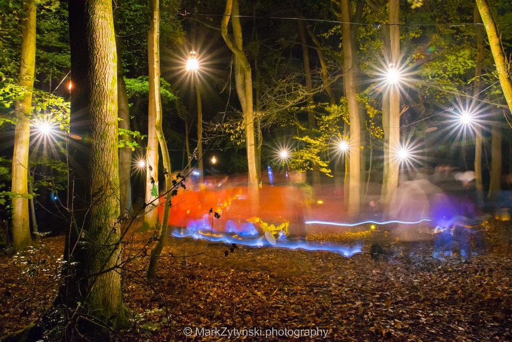 Trees-woodlands-8621.jpg