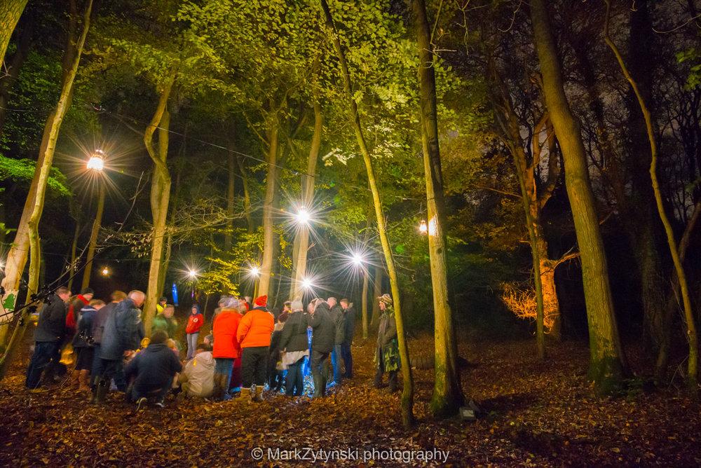 Trees-woodlands-8626.jpg